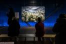 Austellung - Wunder der Natur 06