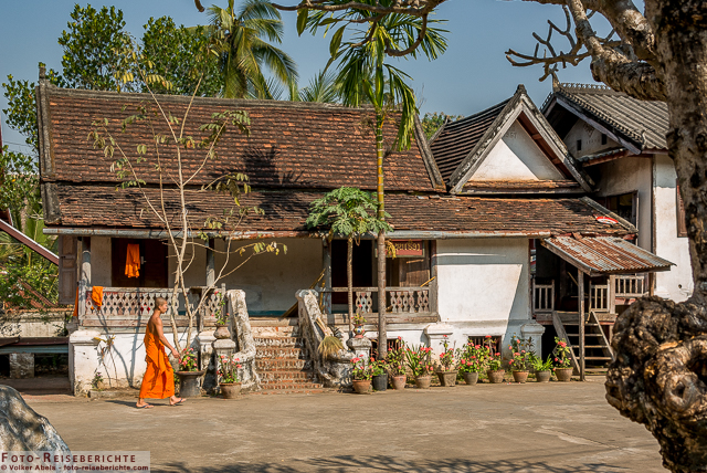 Mönch im Wat Sop Sickharam, ein Tempel in Luang Prabang, Laos © Volker Abels - www.foto-reiseberichte.com