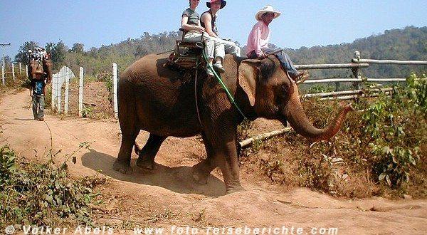 Elefantenritt Thailand nördlich von Chiang Mai © Volker Abels