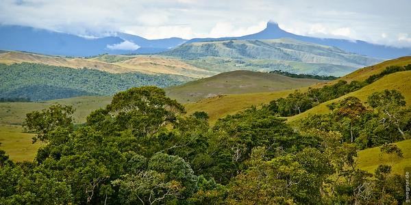 Wunderschöne Gran Sabana in Venezuela © Gunther Wegner (gewegner.de)