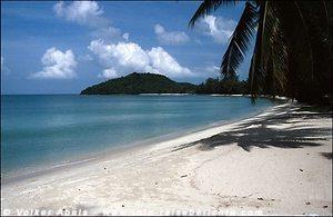Strand unter Palmen © Volker Abels