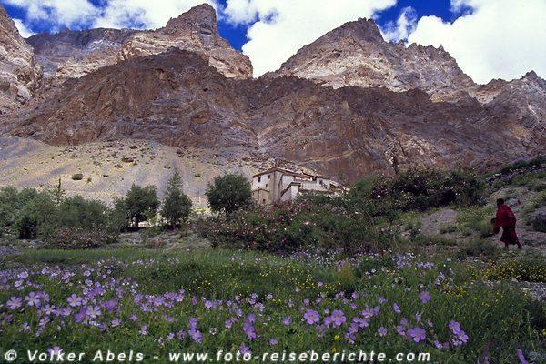 Mönch auf dem Weg zum Lingshed Kloster - Ladakh © Volker Abels