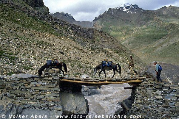 Photo of Ladakh und Zanskar: Zwischen Schlamm und Serpentinen – Trekking im Herzen des Himalaya – Teil 3