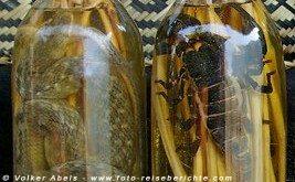 In Schnaps eingelgte Schlangen und Skorpione werden als Souvenir verkauft - Laos © Volker Abels