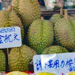 Durian - die Durianfrucht oder Stinkfrucht aus Südostasien