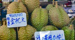 Durian Früchte auf einem Markt in Thailand - © Volker Abels www.foto-reiseberichte.com_