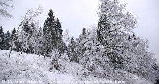 Eis und Schnee © Volker Abels