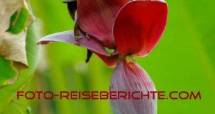 www.foto-reiseberichte.com
