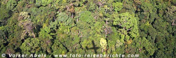 Photo of Dschungeltrekking – Trekking im Dschungel von Sarawak auf Borneo – Malaysia