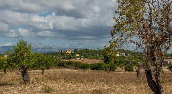 Landschaft im Inneren der Insel Mallorca