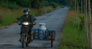 Moped mit Beiwagen in Thailand