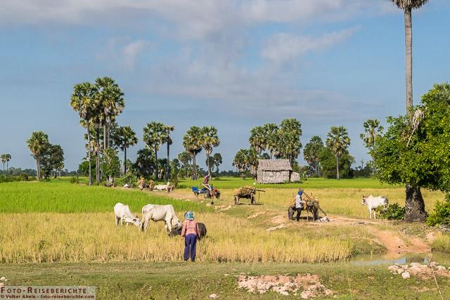 Draußen auf dem Land © Volker Abels - www.foto-reiseberichte.com
