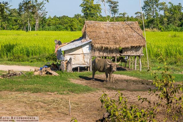 Kleine Hütte auf dem Land © Volker Abels - www.foto-reiseberichte.com